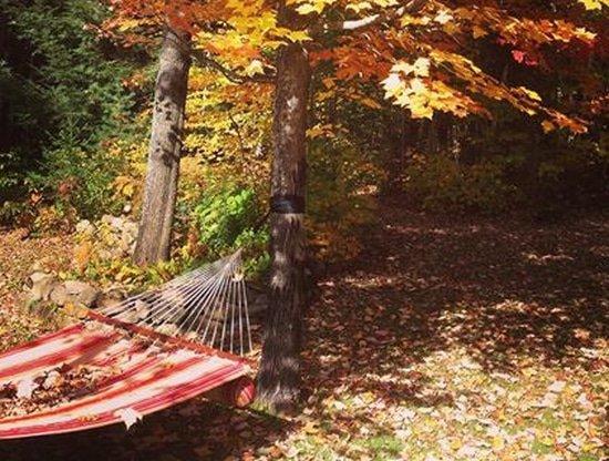 Hangmat in de herfst. Buiten laten hangen of naar binnen brengen?