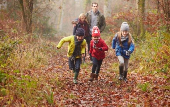 In de herfst maak je heerlijke boswandelingen