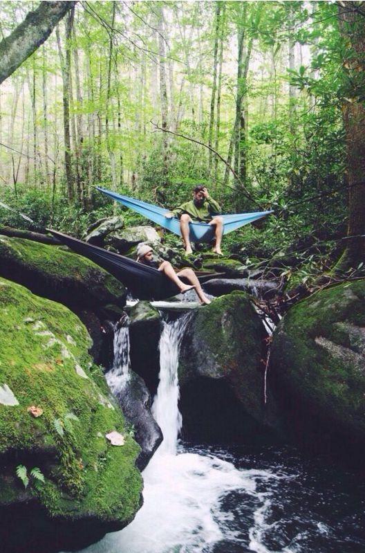 Hangmat hoog in de boom